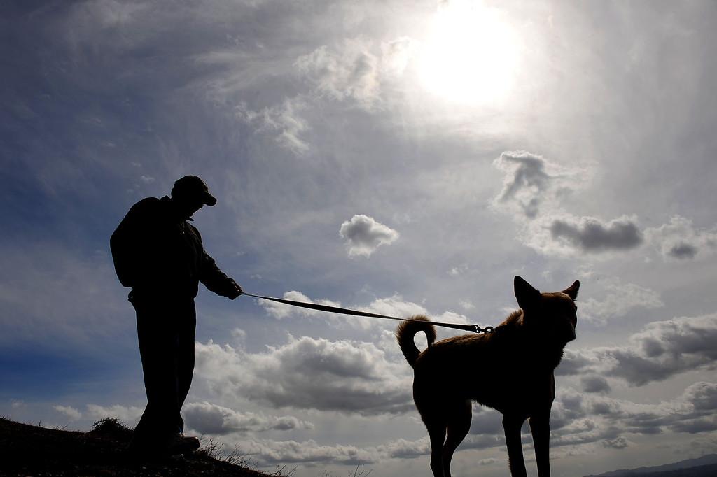 Description of . Clouds hover over the San Fernando Valley as John Nicsinger walks his dog
