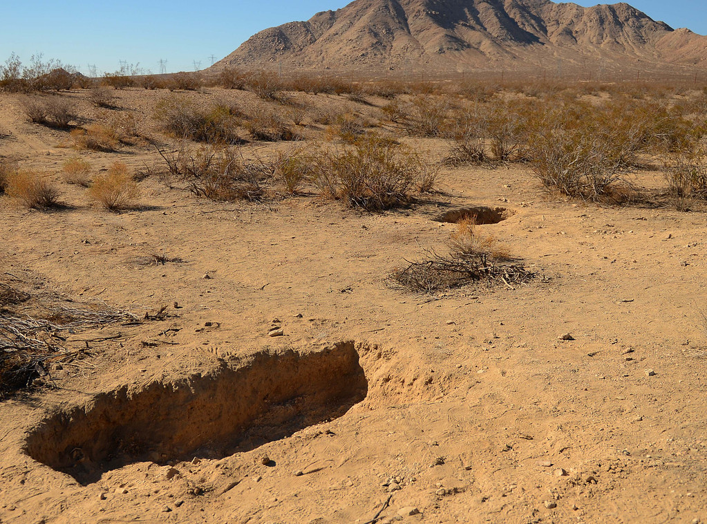 Description of . The area where skeletal remains were found in shallow graves Tuesday November 12, near Victorville west of the 15 Freeway. LaFonzo Carter/ Staff Photographer