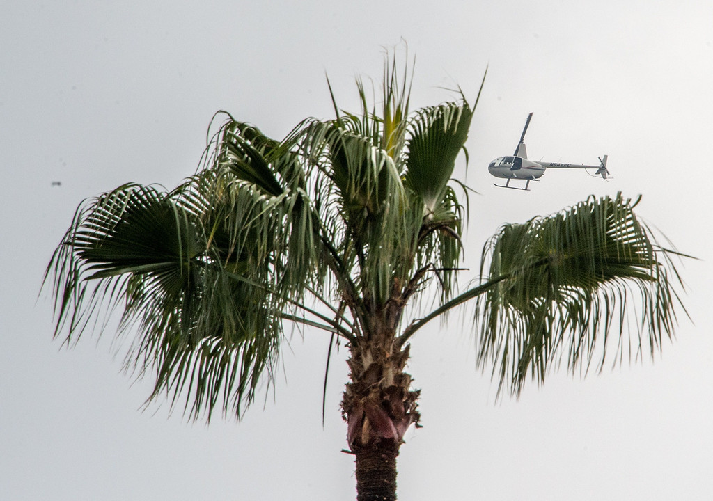 Description of . A news chopper flies over Hollywood Forever Cemetery during the funeral of Mick Jagger's girlfriend LWren Scott  in Hollywood, California on March 25, 2014. The model-turned-fashion designer was found hanged in her luxury New York apartment last week. She was 49. The cemetery was closed for the roughly one-hour service, held amid tight security.           (JOE KLAMAR/AFP/Getty Images)