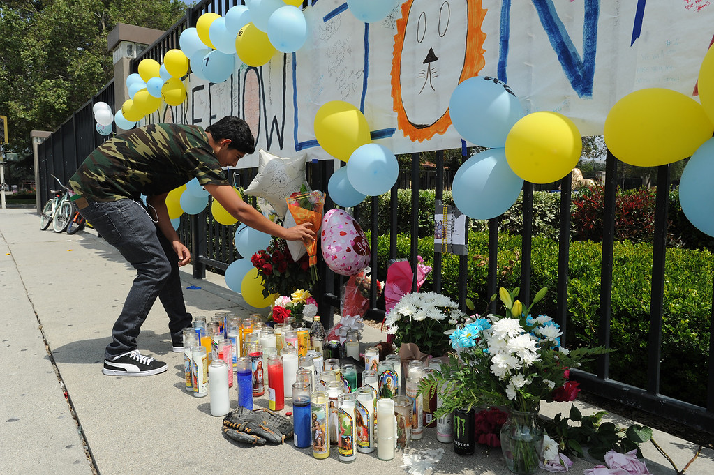 Description of . Jorge Padilla,17, places flowers at the memorial of his classmate. Students at El Monte High School brought flowers, candles and other items in remembering Adrian Castro, a Senior student who was killed in bus crash in Northern California that took the lives of 10 people. El Monte, CA. 4/13/2014(Photo by John McCoy / Los Angeles Daily News)