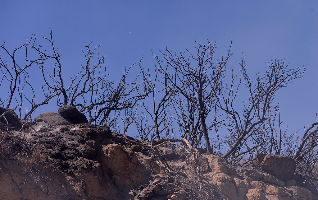 Description of . A view of damage caused by the Silver Fire in the mountains south of Banning August 8, 2013.   GABRIEL LUIS ACOSTA/STAFF PHOTOGRAPHER.