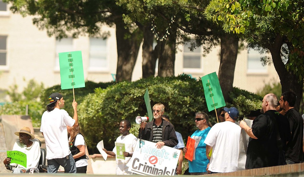 Description of . Medical Marijuana Patients Protest outside San Bernardino City Hall Thursday May 16, 2013 in San Bernardino..LaFonzo Carter/ Staff Photographer