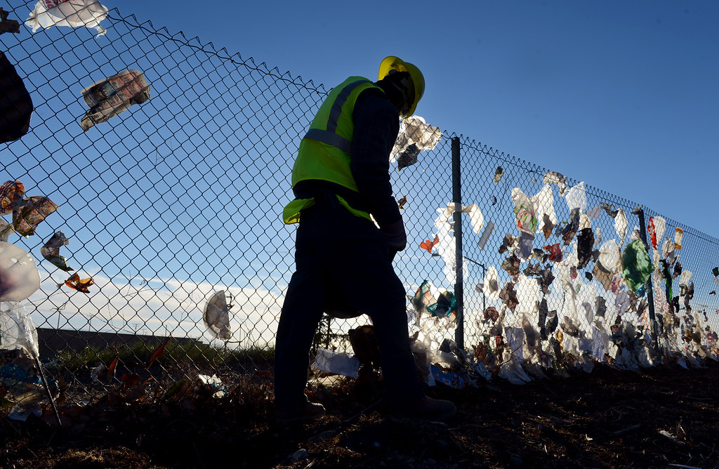 Description of . Workers from Athens Service pull wind blown trash Monday December 9, 2013, from a fence bordering the 210 freeway in Fontana. Trash was stuck along nearly a mile of fence line. (Staff photo by Rick Sforza/The Sun)