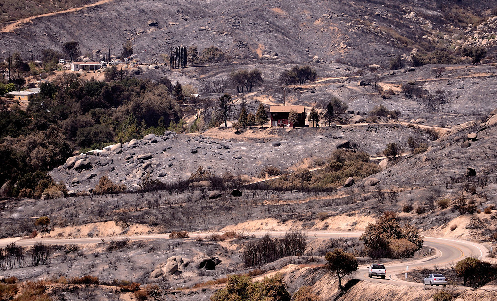 Description of . A view of charred terrain caused by the Silver Fire as seen along Poppet Flats Road in the mountains south of Banning August 10, 2013.  GABRIEL LUIS ACOSTA/STAFF PHOTOTGRAPHER.