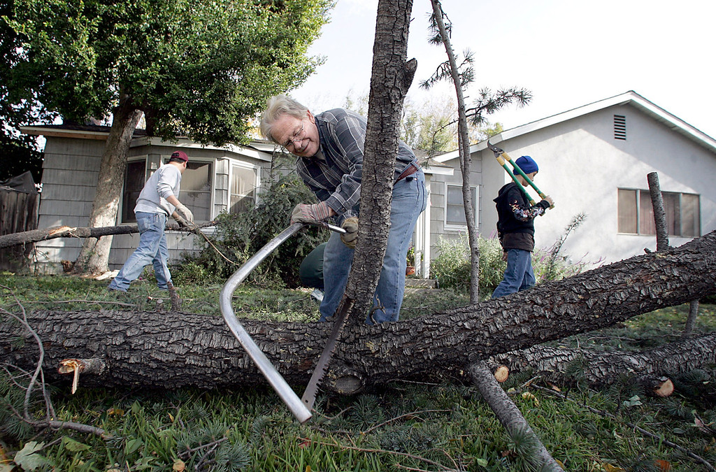 Description of . Bruce Rudder, 69, saws up a Deodora Cedar branch with his son-n-law Frank Martinez and grandson Alexander Martinez, 12, in front of their home on Loma Avenue in Temple City Thursday, December 1, 2011 after winds gusting up to 80 miles an hour whipped through the San Gabriel Valley overnight. As many as 230,000 were reported without power and the city of Pasadena declared a state of emergency. The family also had a neighbors pine fall on the house trapping two cars. (SGVN/Staff Photo by Sarah Reingewirtz/SXCITY)