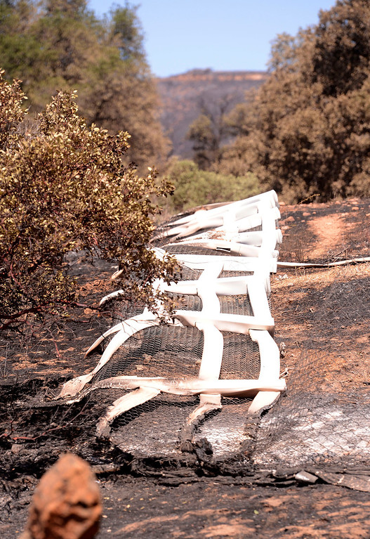Description of . A view of fencing that was melted by the Silver Fire as seen near Twin Pines Road in the mountains south of Banning August 10, 2013.   GABRIEL LUIS ACOSTA/STAFF PHOTOTGRAPHER.