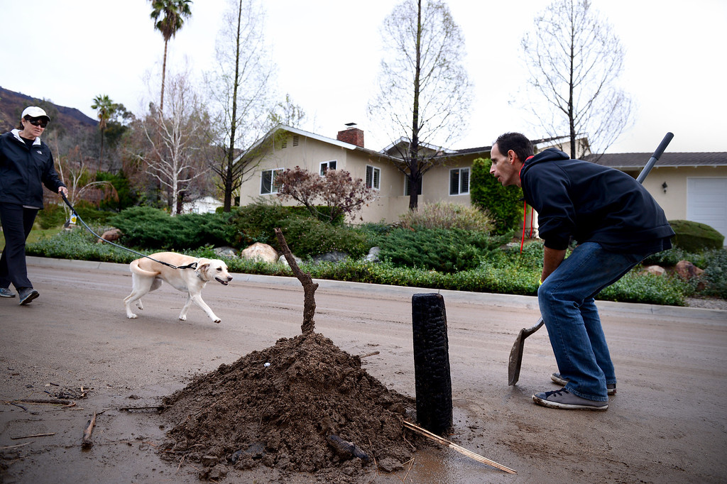 Description of . Chad Exley, of Azusa, takes a break from cleaning up mud at his mother Trish Emery's home on Rainbow Drive in Glendora to greet a neighbor and her dog Saturday, March 1, 2014. The neighborhood sits below the Colby Fire burn area. (Photo by Sarah Reingewirtz/Pasadena Star-News)