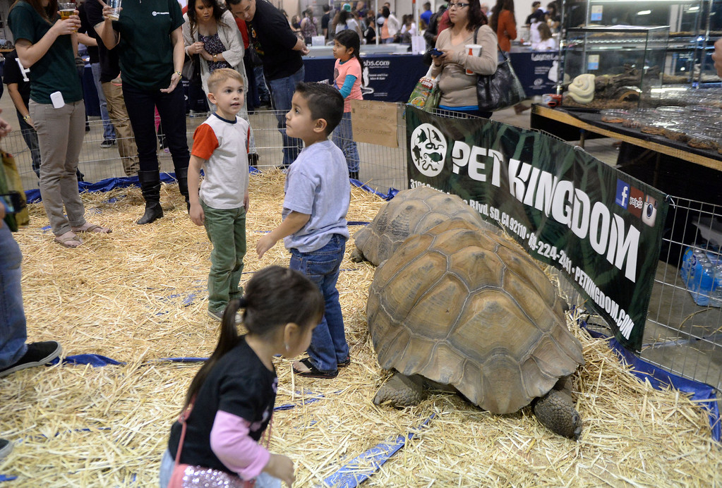 Description of . Kids pet large turtles during the Reptile Super Show which is the world's largest reptile show with more than 500 tables of rare & unique animals including lizards, turtles, frogs, supplies at the Fairplex in Pomona, Calif., on Saturday, Jan.4, 2014.   (Keith Birmingham Pasadena Star-News)