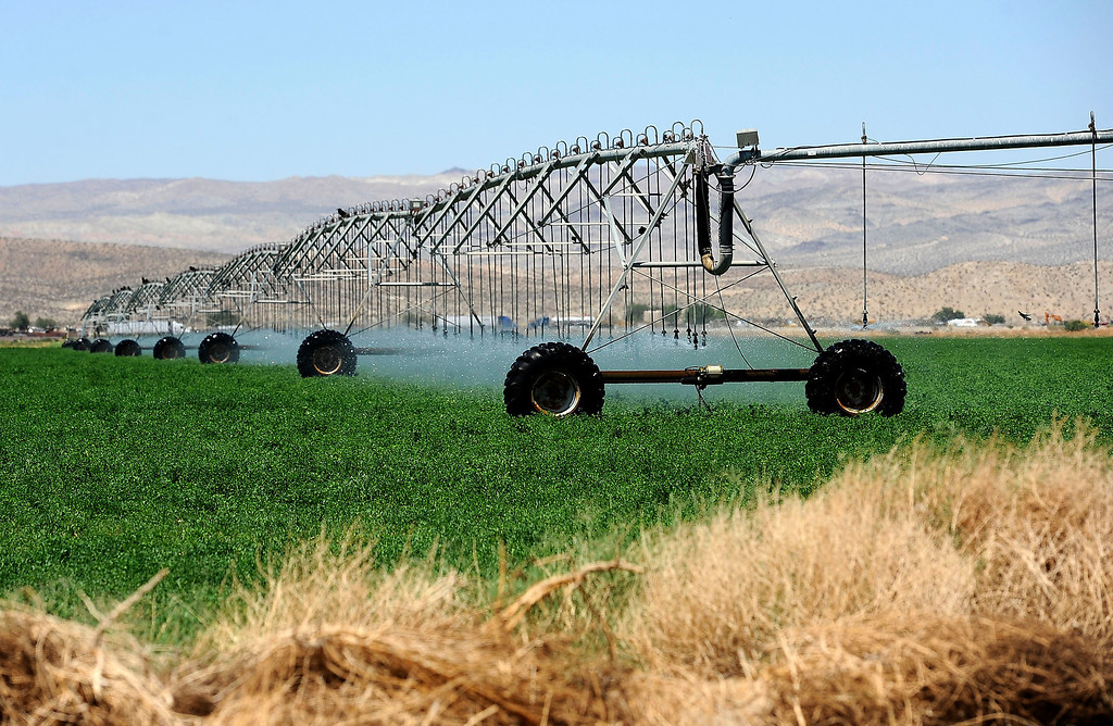 Description of . A view of an agriculture area in Hinkley June 13, 2012.  GABRIEL LUIS ACOSTA/STAFF PHOTOGRAPHER.  .