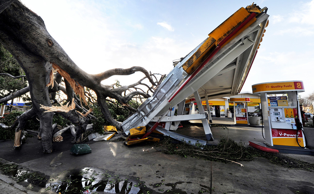 Description of . High winds caused a tree on Colorado Boulevard in Pasadena to fall on a Shell Station at Colorado Boulevard and San Gabriel Boulevard in Pasadena Thursday, Decemeber 1, 2011. Wind gusts were reported to be as high as 85 mph. (SGVN/Staff Photo by Walt Mancini/SXCity)
