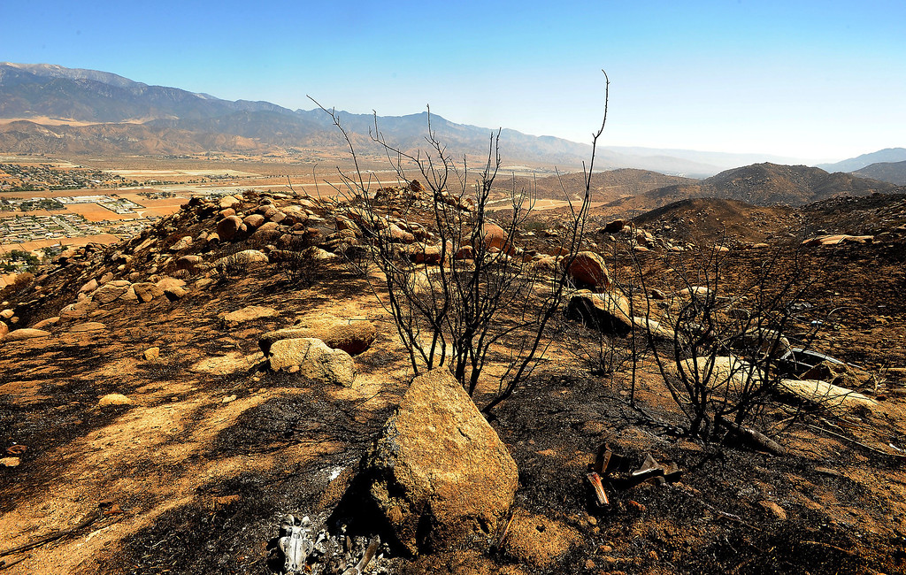 Description of . A view of charred terrain caused by the Silver Fire as seen along Highway 243 in the mountains south of Banning August 10, 2013.  GABRIEL LUIS ACOSTA/STAFF PHOTOTGRAPHER.