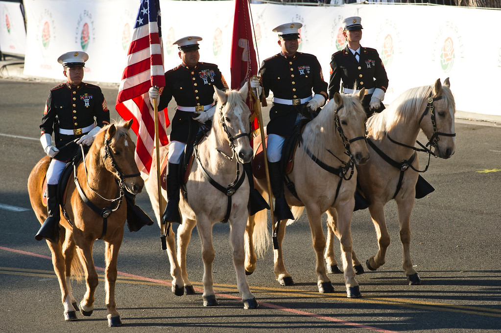 Description of . U.S. Marine Corps Mounted Color Guard during 2014 Rose Parade in Pasadena, Calif. on January 1, 2014. (Staff photo by Leo Jarzomb/ Pasadena Star-News)