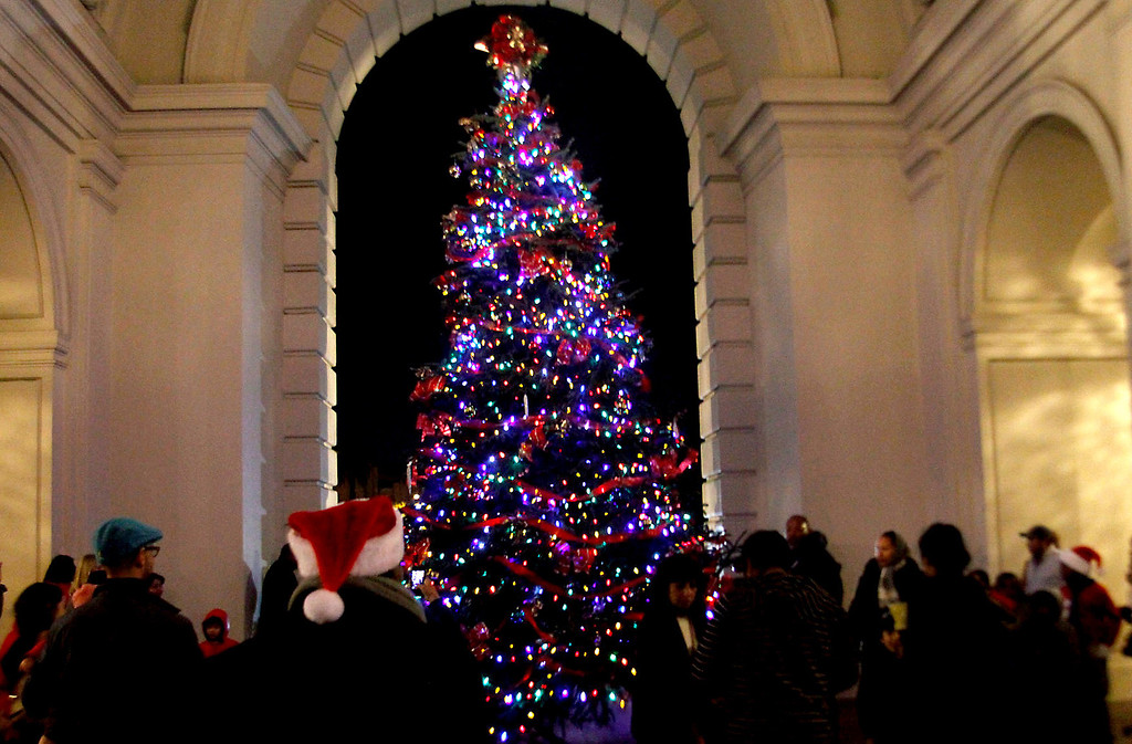 Description of . Guests take pictures and admire Pasadena's annual Holiday Tree, during Pasadena Mayor Bill Bogaard Annual Holiday Tree Lighting event, at the Pasadena City Hall, in Pasadena, CA., Thursday, December 5, 2013. Pasadena's Tree Lighting event a free family celebration with local singers, art projects for kids and a special appearance by Santa Claus.  (Photo by James Carbone for the Pasadena Star News)