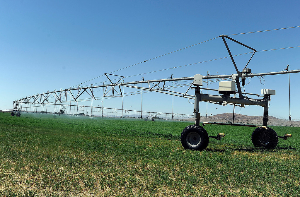 Description of . A view of an agriculture area in Hinkley June 13, 2012.  GABRIEL LUIS ACOSTA/STAFF PHOTOGRAPHER.