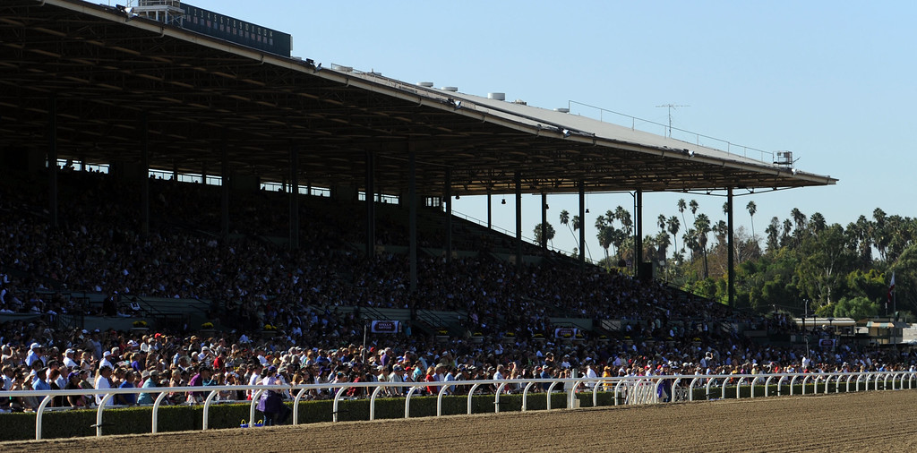 Description of . The grand stands during the seventh race during the Breeders' Cup at Santa Anita Park in Arcadia, Calif., on Saturday, Nov. 2, 2013.    (Keith Birmingham Pasadena Star-News)