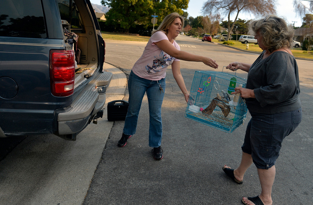 Description of . Darlene Mathieson, right of Sierra Madre, helps her daughter Kelly Navarro, left, with her parakeets at the evacuation center for victims of the Colby Fire in Glendora, CA Thursday January 16, 2014. (Thomas R. Cordova Daily Breeze/Press-Telegram)