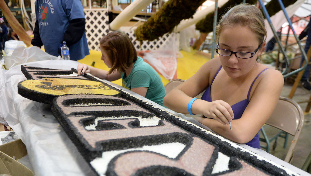 Description of . Hannah Thompson works on the RFD TV float during the final stages of preparation for the 2014 Rose Parade as a variety of seeds, bark, fruits and vegetables, grasses and of course, flowers are being applied to the floats by experienced professionals as well as hard working volunteers at the Rosemont Pavilion in Pasadena, Calif., on Saturday, Dec. 28, 2013.     (Keith Birmingham Pasadena Star-News)