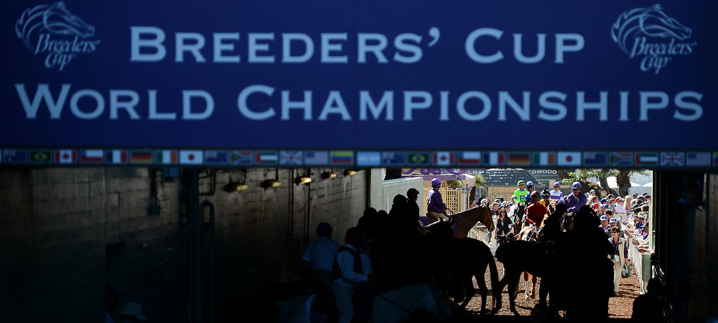 Description of . Jockey's and horses gather prior to the fourth race during the Breeders' Cup at Santa Anita Park in Arcadia, Calif., on Saturday, Nov. 2, 2013. Jockey Javier Castellano atop
