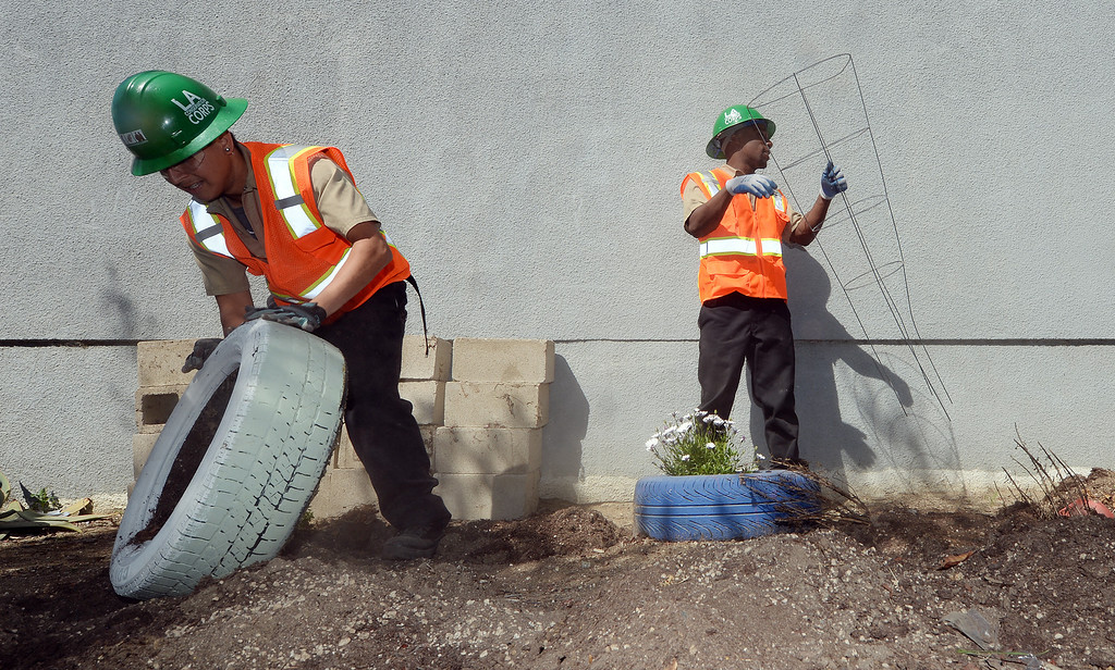 Description of . Los Angeles Conservation Corps volunteers Brian Rodriguez (left), 22 from Los Angeles, and De Anthony Cole (right), 25 originally from Pomona, remove old tire planters at the Boys and Girls Club of Pomona Valley Monday. Approximately 40 volunteers including staffers of L.A. County Supervisor Gloria Molina's office, along with members of the Los Angeles Conservation Corps and some Chavez Week volunteers were at the Boys and Girls Club of Pomona Valley on Monday March 31, 2014 as a part of a beautification project.  (Will Lester/Inland Valley Daily Bulletin)