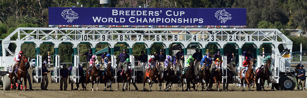 Description of . The start of the fourth race during the Breeders' Cup at Santa Anita Park in Arcadia, Calif., on Saturday, Nov. 2, 2013. Jockey Javier Castellano atop