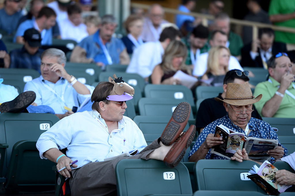 Description of . People watch a race at the Breeders' Cup at Santa Anita Park in Arcadia Friday, November 1, 2013. (Photo by Sarah Reingewirtz/Pasadena Star-News)