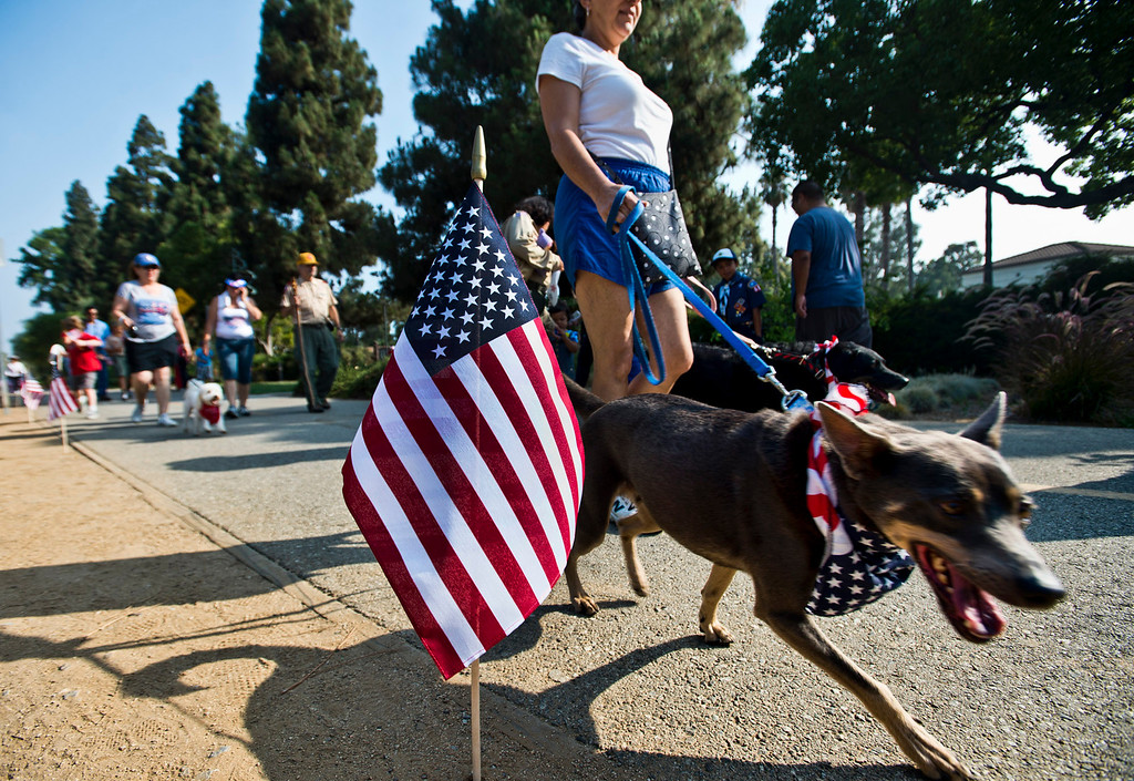 Description of . Loretta Rihbany, of Whittier, participates in the freedom walk with her dogs, Logan, front, and Ella along the Greenway Trail, in Whittier on Thursday, July 4, 2013. (SGVN/Staff photo by Watchara Phomicinda)