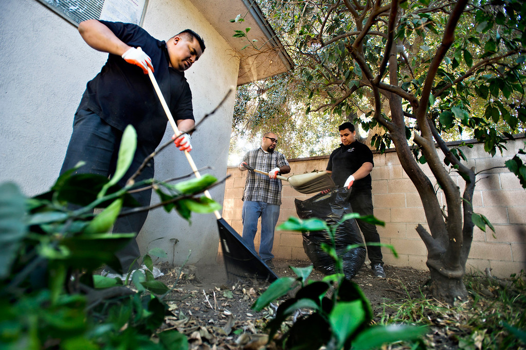 Description of . Home Depot volunteers, from left, Cesar Vital, 40, Alex Murillo, 31, and Mario Patlan, 20, help cleanup the backyard for a veteran, Fidel Sanchez, a member of VFW Post 8070, at his Azusa home on Friday morning, Nov. 8, 2013. (Photo by Watchara Phomicinda/San Gabriel Valley Tribune)