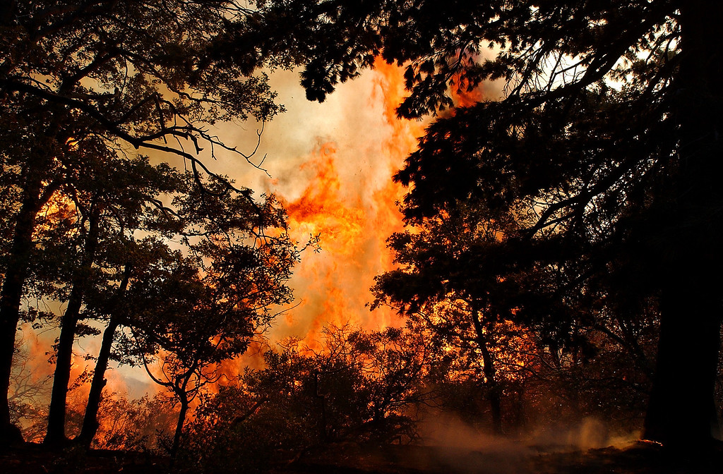 Description of . Ten years ago this month the arson caused Old Fire, fanned by Santa Ana winds burned thousands of acres, destroyed hundreds of homes and caused six deaths. The fire burned homes in San Bernardino, Highland, Cedar Glen, Crestline, Running Springs and Lake Arrowhead and forced the evacuation of thousand of residents. A wall of flame runs up the mountain during the
