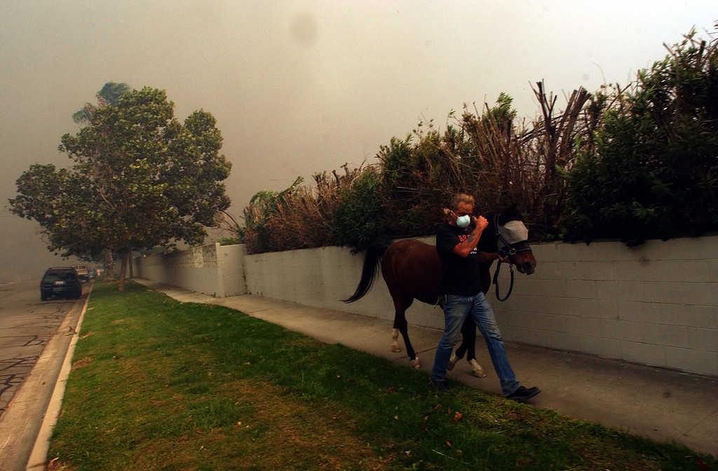 Description of . Ten years ago this month the arson caused Old Fire, fanned by Santa Ana winds burned thousands of acres, destroyed hundreds of homes and caused six deaths. The fire burned homes in San Bernardino, Highland, Cedar Glen, Crestline, Running Springs and Lake Arrowhead and forced the evacuation of thousand of residents. Randy Hudgens evacuates his Arabian mix horse
