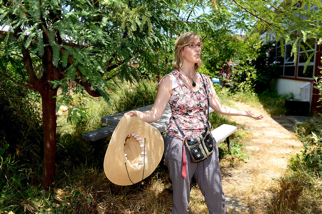 Description of . Biology teacher Joan Stevens is trying to save the permaculture garden she cultivated at Arcadia High School from becoming concrete planter boxes as the school modernizes, Thursday, June 13, 2013. Stevens is working with district officials to turn the garden into an outdoor classroom.   (SGVN/Staff Photo by Sarah Reingewirtz)