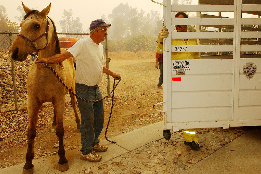 Description of . The GrandPrix fire started three days before the Old Fire.  It fed into the Old Fire. Ten years later, there are rumblings that it too was started by an arsonist. But to this day, its origins remain a mystery. Chuck Rowe, a 10-year resident of Rancho Cucamonga, evacuates his horse