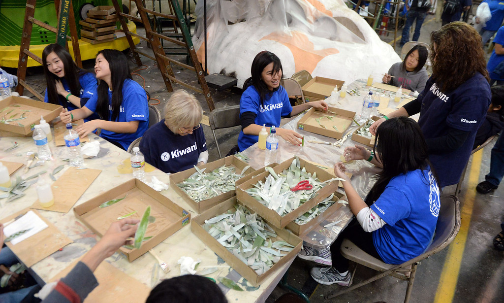 Description of . Kiwanis volunteers prepare leafs during the final stages of preparation for the 2014 Rose Parade as a variety of seeds, bark, fruits and vegetables, grasses and of course, flowers are being applied to the floats by experienced professionals as well as hard working volunteers at the Rosemont Pavilion in Pasadena, Calif., on Saturday, Dec. 28, 2013.     (Keith Birmingham Pasadena Star-News)