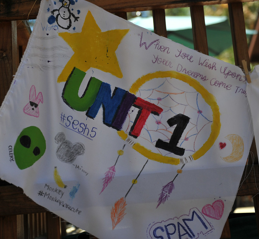. Unit banners created by the campers. The kids are enjoying the mountains for a week at Camp River Glen, a much different environment than their usual inner city home lives across Southern California. August 6, 2014. (Photo by Brittany Murray / Daily Breeze)
