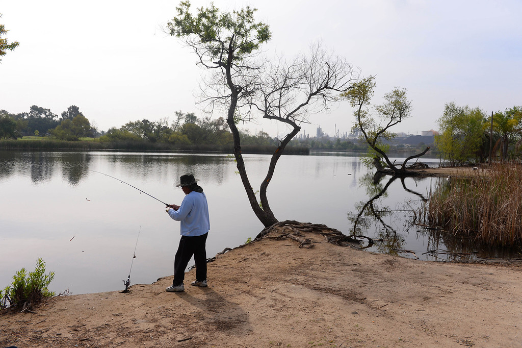 . General scenes of Machado Lake in Harbor City that is slated to undergo a major renovation and dredging to attempt to restore the ecosystem. Lots of pollution and general neglect can be seen.   Photo by Brad Graverson/Mon. Mar 20, 2014/The Daily Breeze