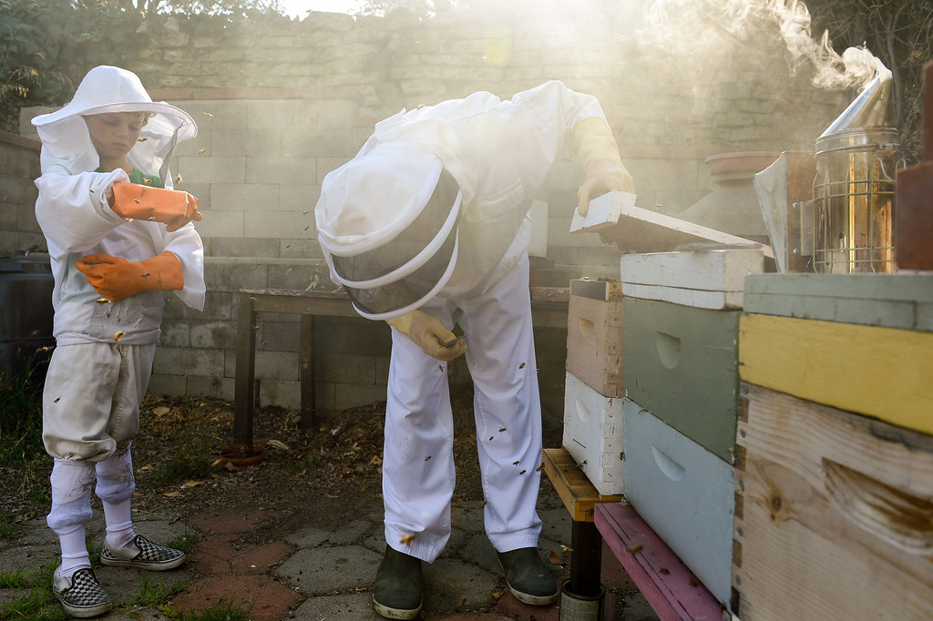 . David Bock lifts the lid to beehives in the backyard of his Glassell Park home as his son, Simon, 8, watches, Tuesday, February 25, 2014. (Photo by Michael Owen Baker/L.A. Daily News)