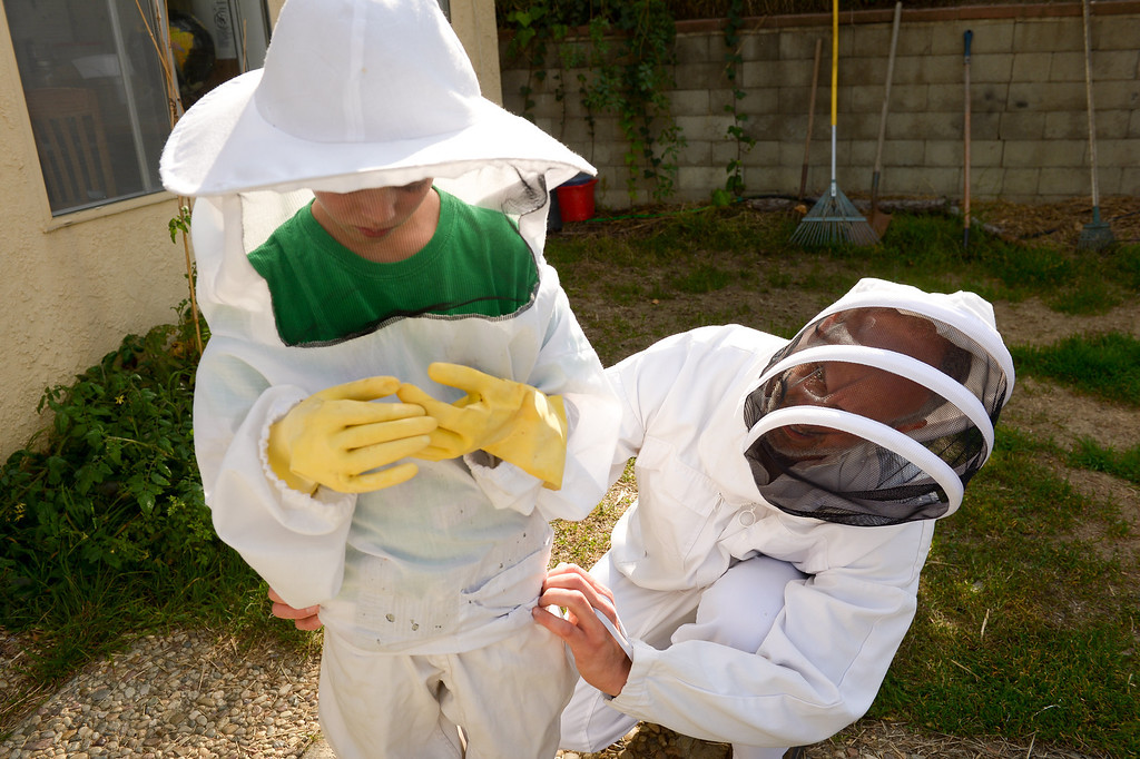 . David Bock helps his son, Simon, 8, with his bee suit before inspecting beehives in the backyard of their Glassell Park home, Tuesday, February 25, 2014. (Photo by Michael Owen Baker/L.A. Daily News)
