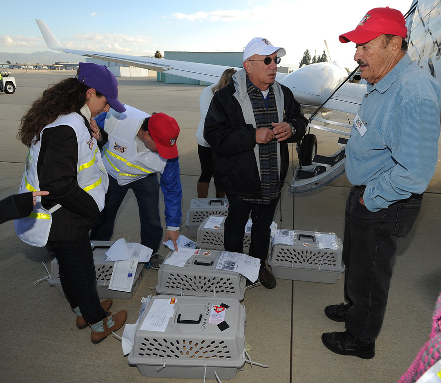 . Yehuda Netanel, center wearing a white hat, speaks to pilot Frank Singer about how to load the pets onto the aircraft. Volunteers at Van Nuys airport loaded over 400 animals onto 14 private planes so that they could go to new homes all over the Pacific Northwest. The non-profit organization Wings of Rescue is in its 3rd year of finding homes for dogs and cats that would otherwise be put down. Van Nuys, CA. 12/5/2013, photo by (John McCoy/Los Angeles Daily News)