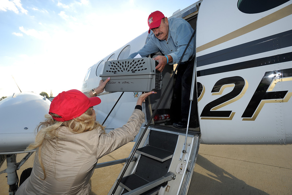 . Miri Shepher hands a crated dog to pilot Frank Singer as he loads his plane with pooches. Volunteers at Van Nuys airport loaded over 400 animals onto 14 private planes so that they could go to new homes all over the Pacific Northwest. The non-profit organization Wings of Rescue is in its 3rd year of finding homes for dogs and cats that would otherwise be put down. Van Nuys, CA. 12/5/2013, photo by (John McCoy/Los Angeles Daily News)
