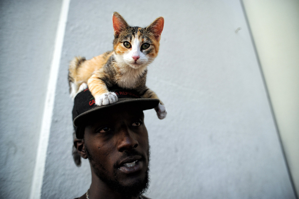 . Homeless, Michael Norton and cat M.J. relax nearby during a rally for Covered California, the state run market exchange for health care insurance at Union Station in Los Angeles Tuesday, October 1, 2013. The rally was held to help kick off open enrollment for those eligible uninsured who qualify to enroll in affordable health care.(Photo by Hans Gutknecht/Los angeles Daily News)