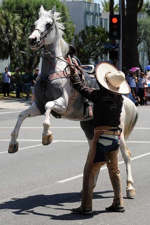 . Rosendo Lopez gets his horse to do some tricks. The Annual Canoga Park Memorial Day Parade marched down Sherman Way from Owensmouth east to Mason Street where it concluded at the First Baptist Church. Canoga park, CA 5/27/2013(John McCoy/LA Daily News)