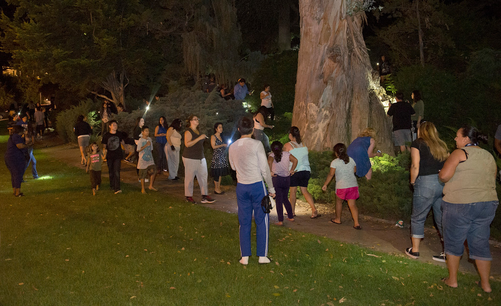 . Cash hunters search all over Penn Park in Whittier for #HiddenCash stashed in Pez dipsensers and lunch boxes in the park bushes on Thursday July 10, 2014. Hundreds of people searched through the bushes all over the park. (Staff Photo by Keith Durflinger/Pasadena Star-News)
