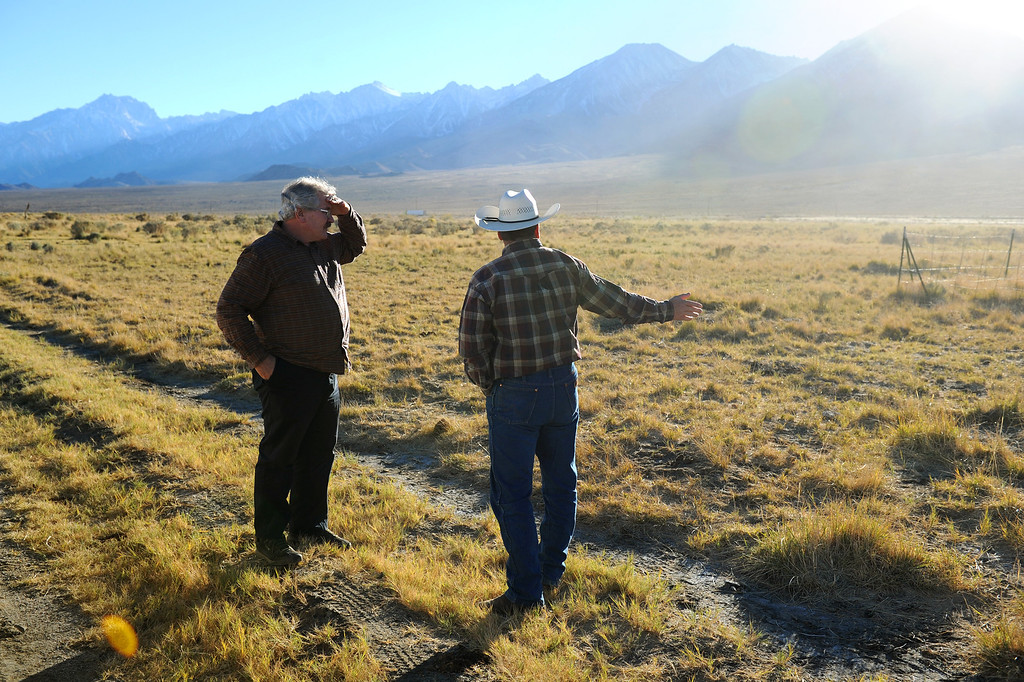 . Mark Bagley, left, and rancher Mark Lacey look at grass growing because of a high water table in the Owens Valley. (Photo by Michael Owen Baker/L.A. Daily News)