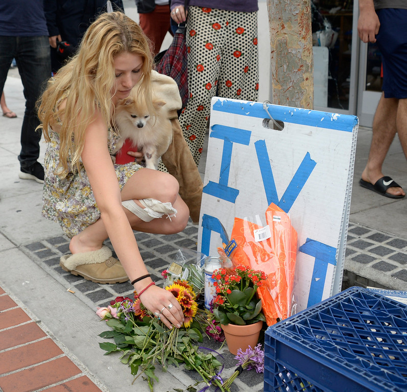 . May 24-,2014. Isla Vista, CA. UCSB student Arrow Denoyer lays down flowers at the sight where one person was killed by the drive-by shooter Friday night. Seven people are dead, including the attacker, and seven others wounded, authorities said Saturday.  The gunman got into two gun battles with deputies Friday night in the beachside community of Isla Vista before crashing his black BMW into a parked car. Photo by Gene Blevins/LA Daily News