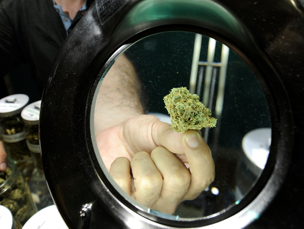 . A bud is shown to a customer at Green Kiss Collective on Vineland Avenue in North Holywood, CA 5/23/2013(John McCoy/LA Daily News)