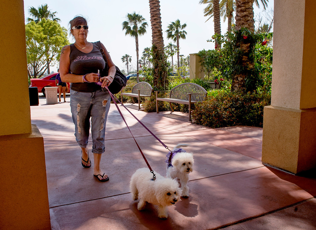 . Evacuees arrive, often with pets, at the Goldy S. Lewis Community Center in Rancho Cucamonga, Calif. after being displaced from their Rancho Cucamonga homes by the Etiwanda Fire April 30, 2014.  Subject declined to give name.  (Staff photo by Leo Jarzomb/San Gabriel Valley Tribune)