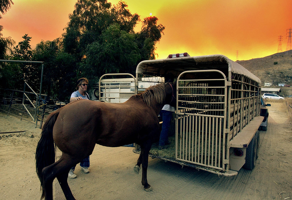 . Under smoke-filled skies, John Hill (partly hidden) leads a horse into a trailer as he evacuates his ranch at the mouth of Hopper Canyon in Fillmore in Southern California\'s Ventura County, Sunday afternoon, Oct. 26, 2003.  The fire known as the Piru fire, that had been approcaching containment, flared anew Sunday.  (AP Photo/Reed Saxon)