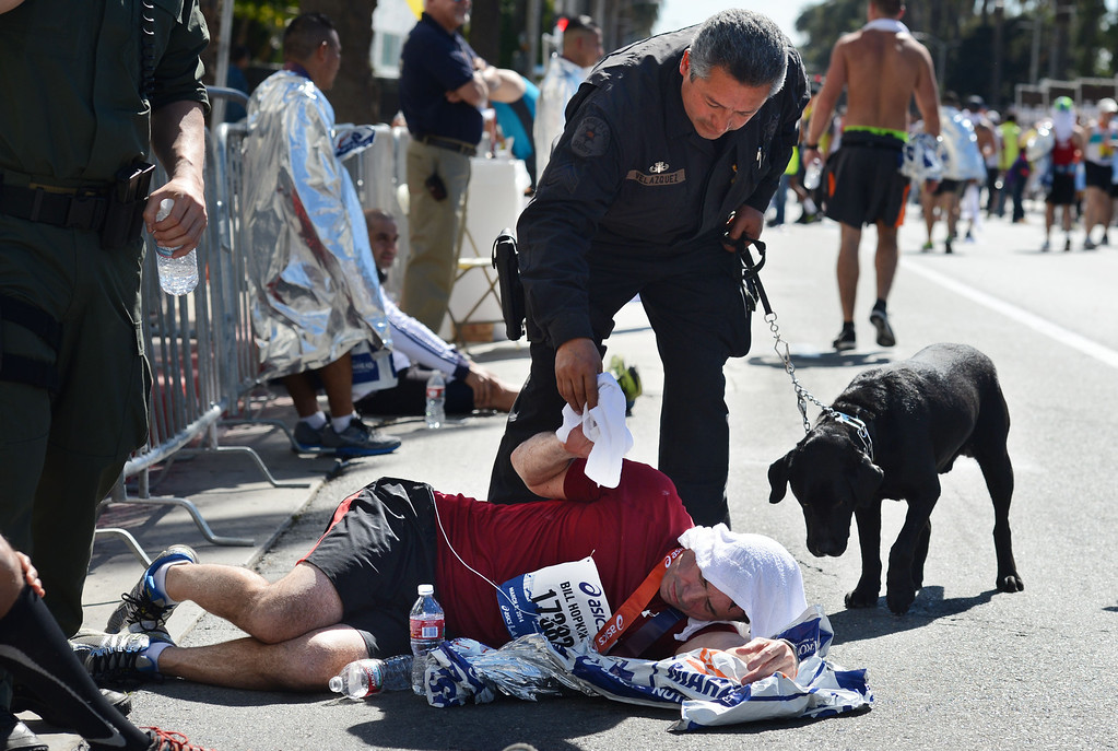 . Member of the LA County Sheriff bomb squad Rick Velasquez  and his dog Duke help 2014 ASICS LA Marathon finisher Bill Hopkins after feeling nauseous after he crossed the finish line in Santa Monica Calif,    Sunday, March 9,  2014. 