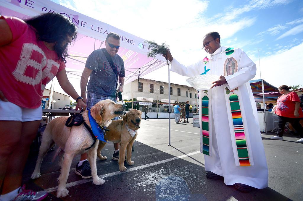 . Father Lambert Okere blesses dogs during their 242nd Annual La Fiesta de San Gabriel Saturday, August 31, 2013 at the San Gabriel Mission. The fiesta runs through Sunday. (Photo by Sarah Reingewirtz/Pasadena Star-News)