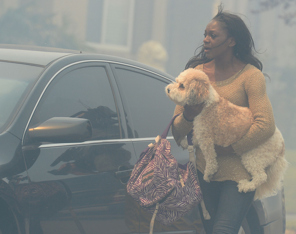 . A evacuated resident carries a dog to a vehicle during the Etiwanda Fire Wednesday in Rancho Cucamonga. Over 1.000 acres and over a 1,000 homes are under mandatory evacuation as the Etiwanda Fire burns in Rancho Cucamonga Wednesday April 30, 2014. Cause of the fire is unknown and is burning in areas which burned during the Grand Prix Fire in October 2003. (Will Lester/Inland Valley Daily Bulletin)