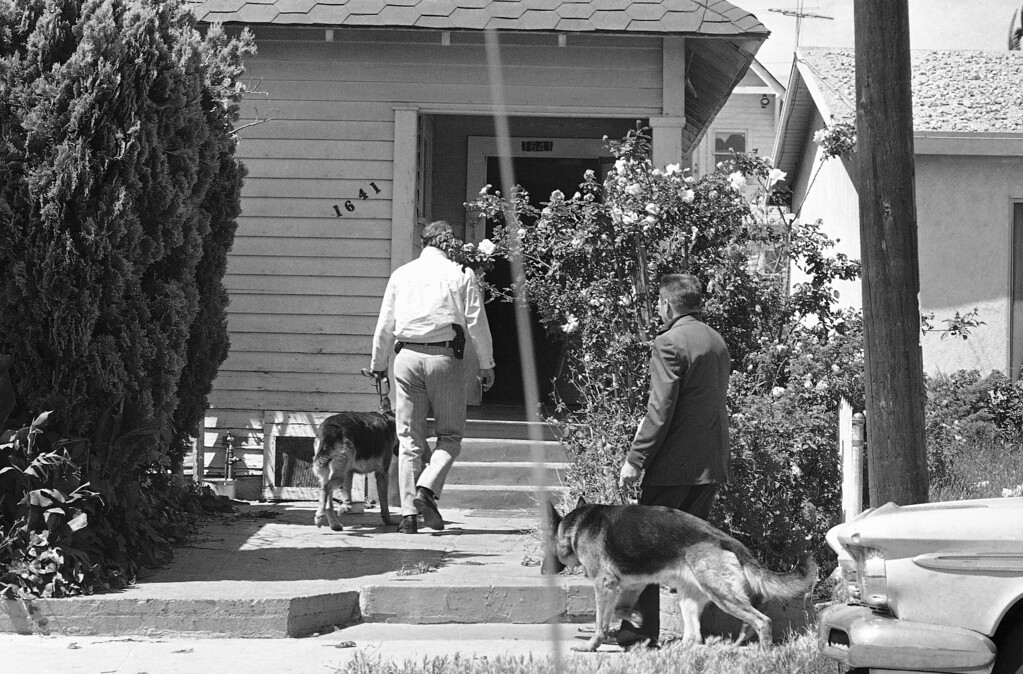 . FBI agents with German shepherd dogs enter a house, suspected of being an SLA hideout in Los Angeles, Sunday, May 19, 1974. The agents entered the house after it was raided by five police officers wearing flak jackets and carrying automatic rifles. Police said the dogs were specially trained to sniff out the scent of articles belonging to Patricia Hearst. Police found nothing at this home. (AP Photo/Jeff Robbins)